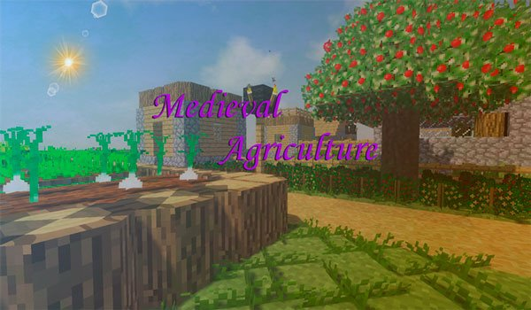 Agricultura medieval 1.12.2